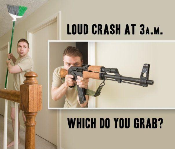 term paper gun control