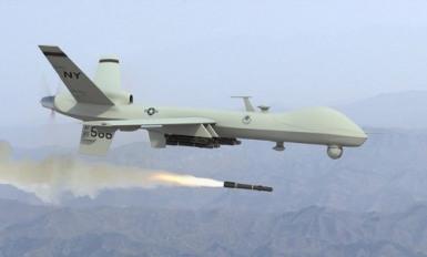 Domestic drone