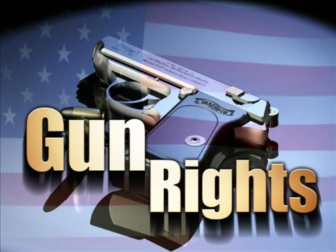 so where do police stand on the 2nd amendment debate two heads
