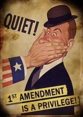 1st Amendment 77