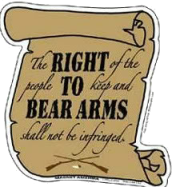 right to bear arms 1
