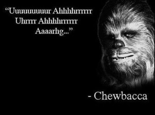 Chewy quote