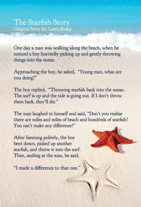 starfish-story-websize