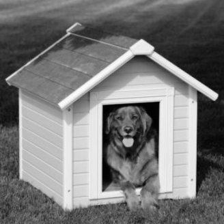 dog-house-10