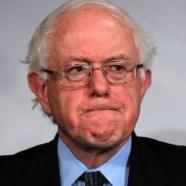 Bernie Sanders 253254