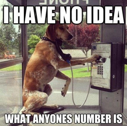 funny-dog-talking-public-phone